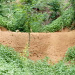 Plugging gullies to check soil erosion