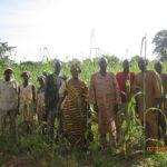Visite de GCOZA dans un champ à Kita