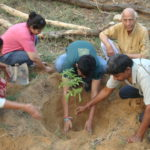 Youth planting trees