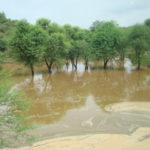 successful rain water harvesting